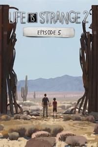 Life is Strange 2 Ep. 5, Pillars of Eternity и Ведьмак 3 добавлены в Xbox Game Pass