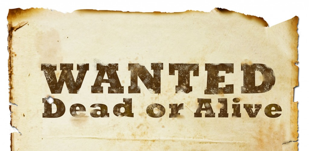 Wanted-Dead-or-Alive-2-1024x501.jpg
