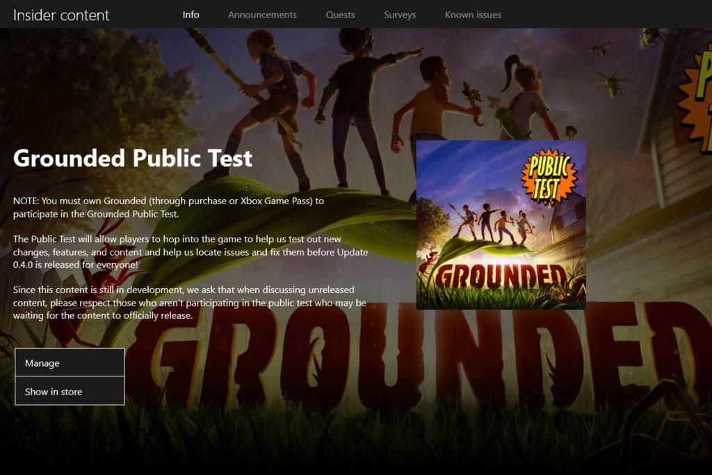 Запущен тестовый сервер Grounded