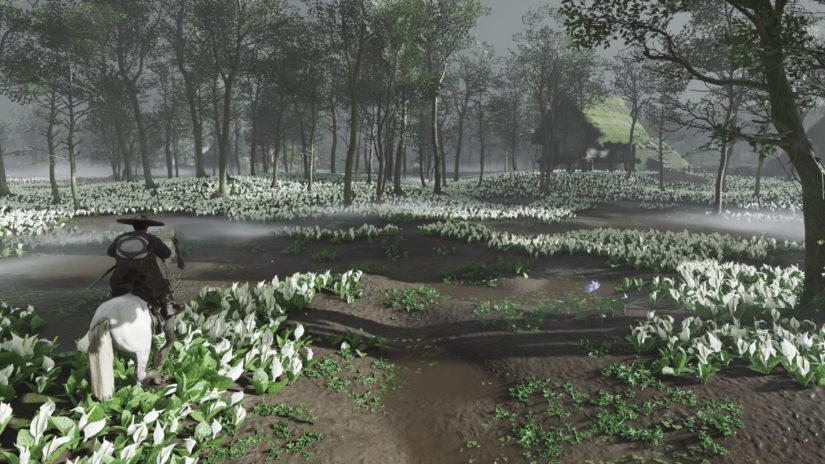 Ghost of Tsushima_цветы в лесу